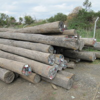 ACQ Timber Treatment