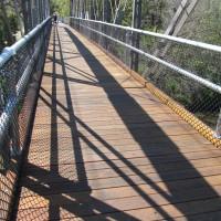 Timber for Bridges